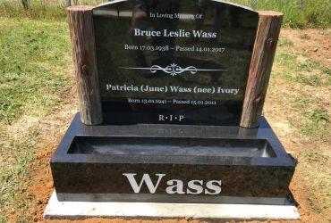 Greg-Wass-1024x768